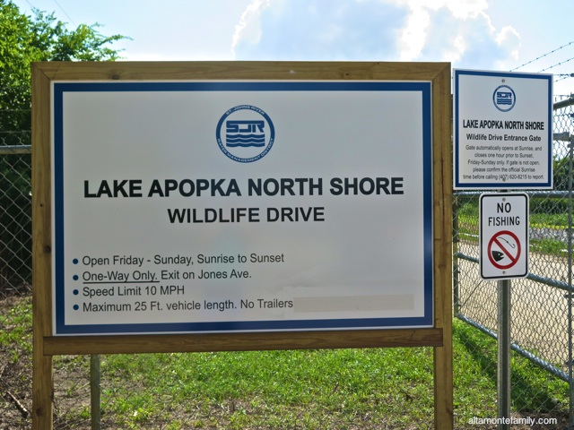 Lake Apopka North Shore Wildlife Drive_Canon PowerShot G16_1