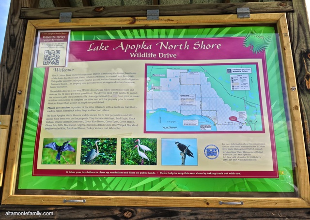 Lake Apopka North Shore Wildlife Drive_Canon PowerShot G16_4