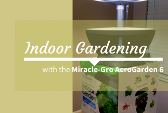Indoor Gardening With Aerogarden 6