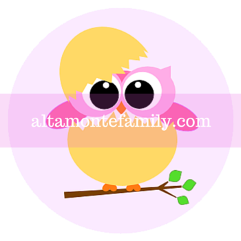 Just Hatched Baby Pink Owl Printable Label
