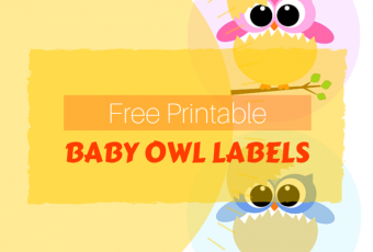 Free Printable Baby Owl Labels