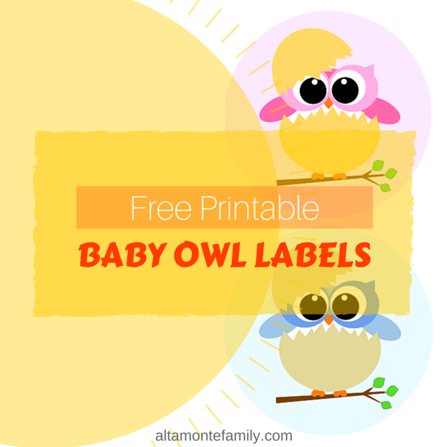 image relating to Free Printable Baby Shower Labels called Free of charge Printable Boy or girl Owl Labels Altamonte Household