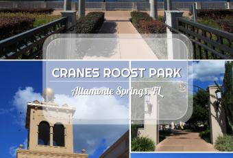 Cranes Roost Park Photos And Renovation Update