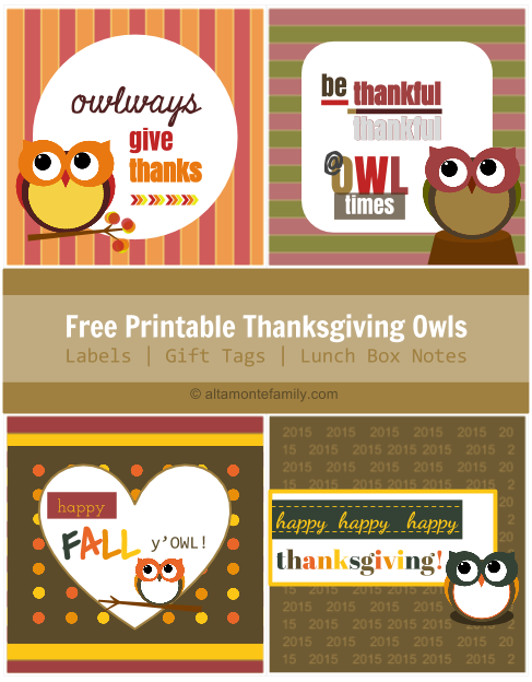photograph about Free Printable Thanksgiving Tags referred to as Absolutely free Printable Thanksgiving Owl Lunch Box Notes and Labels