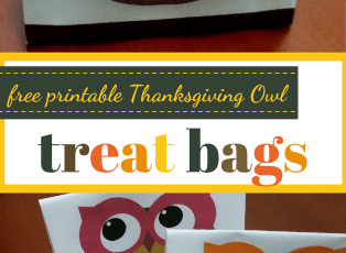 4 Free Printable Thanksgiving Owl Treat Bags