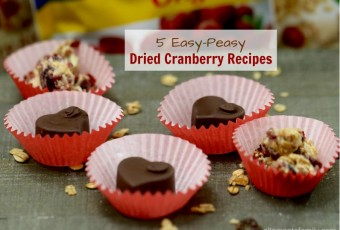 5 Easy-Peasy Dried Cranberry Recipes