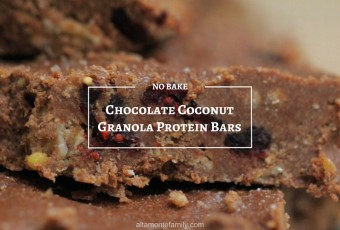 No Bake Chocolate Coconut Granola Protein Bars