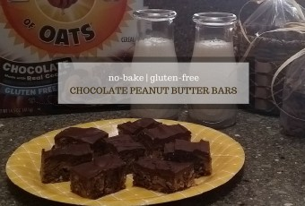 Gluten-Free Road Trip Snack Ideas + No-Bake Recipe