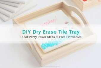 DIY Dry Erase Tile Tray + Owl Party Favors and Printables