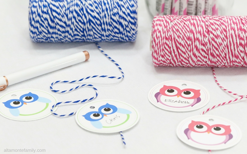 Free Printable Owl Gift Tags and Labels - Pink and Blue