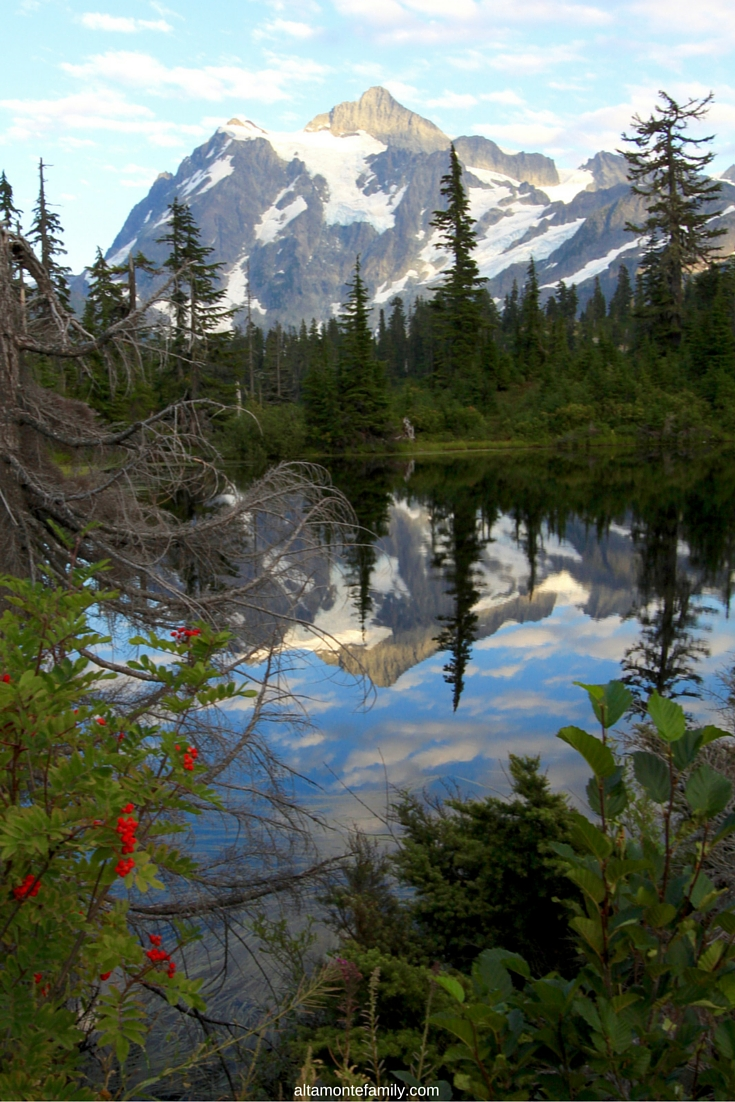 Top Summer Destinations for Families - Mount Rainier National Park - Road Trip Ideas