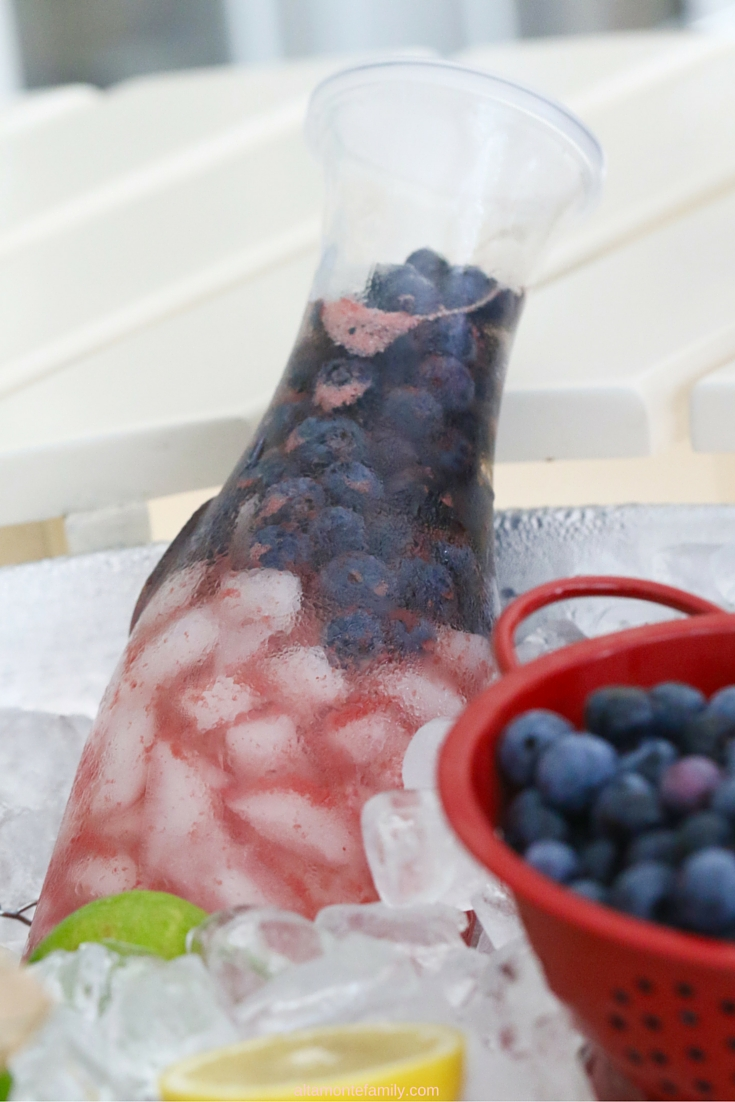 Watermelon Blueberry Fruit Infusion