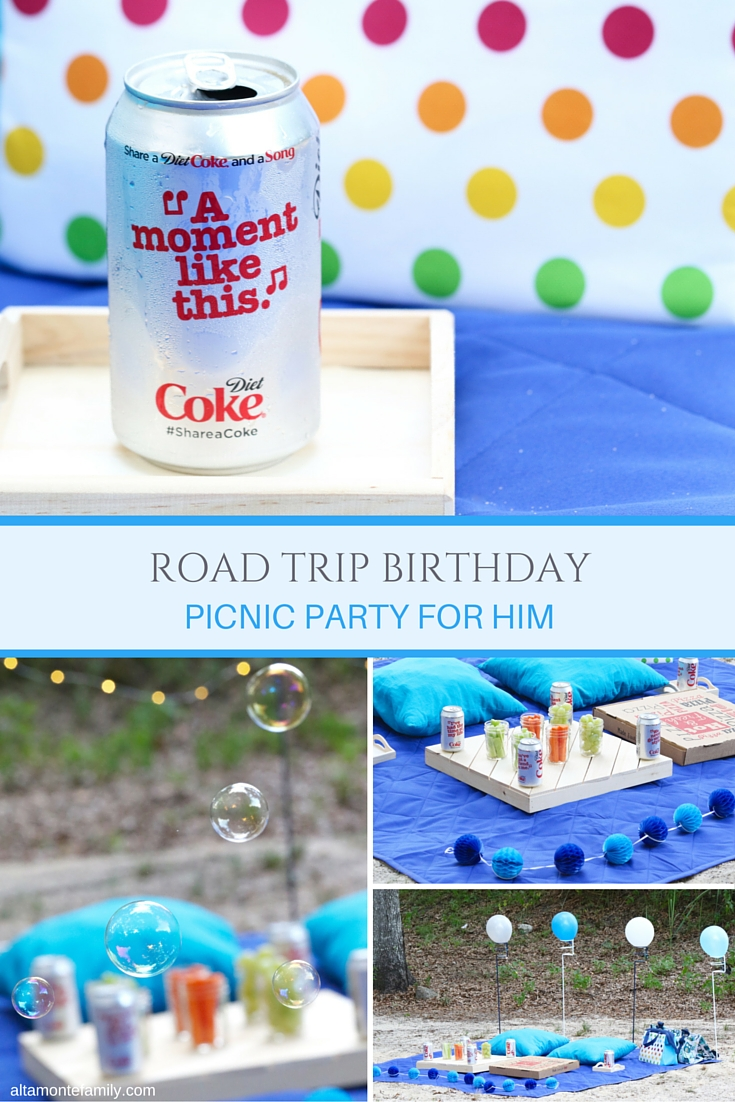 Birthday Picnic Party Ideas for Men