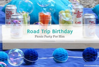 Road Trip Birthday Picnic Party For Men
