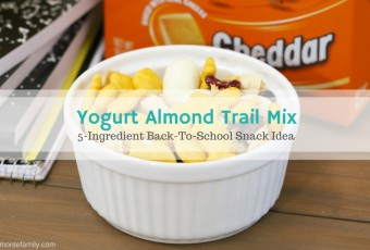Yogurt Almond Trail Mix