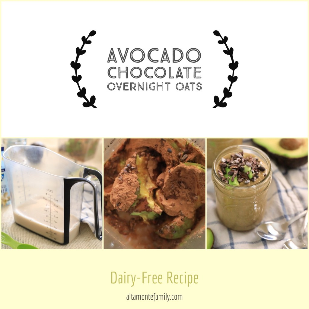 Dairy-Free-Chocolate-Avocado-Overnight-Oats-Raw-Oatmeal-Recipe