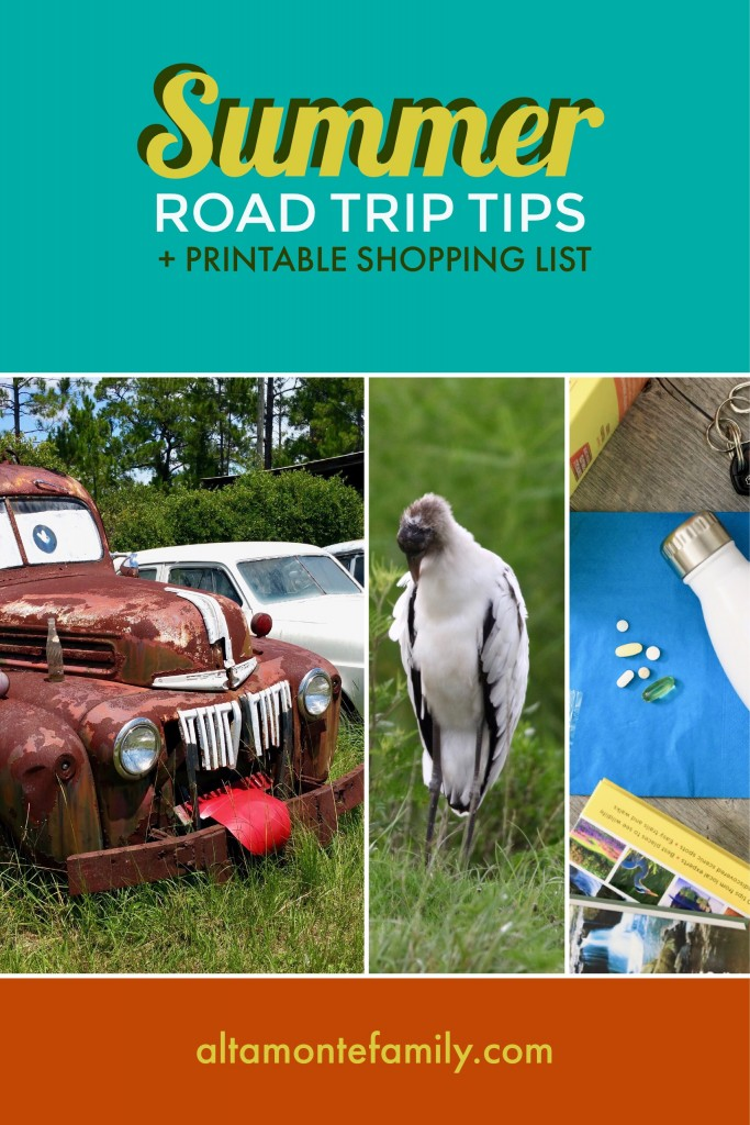 Summer Road Trip Tips and Essentials - Printable Shopping List